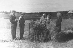 Sotrudniki-OPH-na-polyah-vo-vremya-vzveshivaniya-kormovyh.-1960-g.-570x350